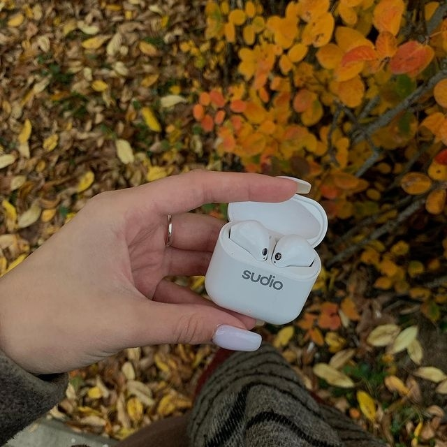 Planning to take a cozy fall walk? Don't forget to bring your best walking partner, Nio, along